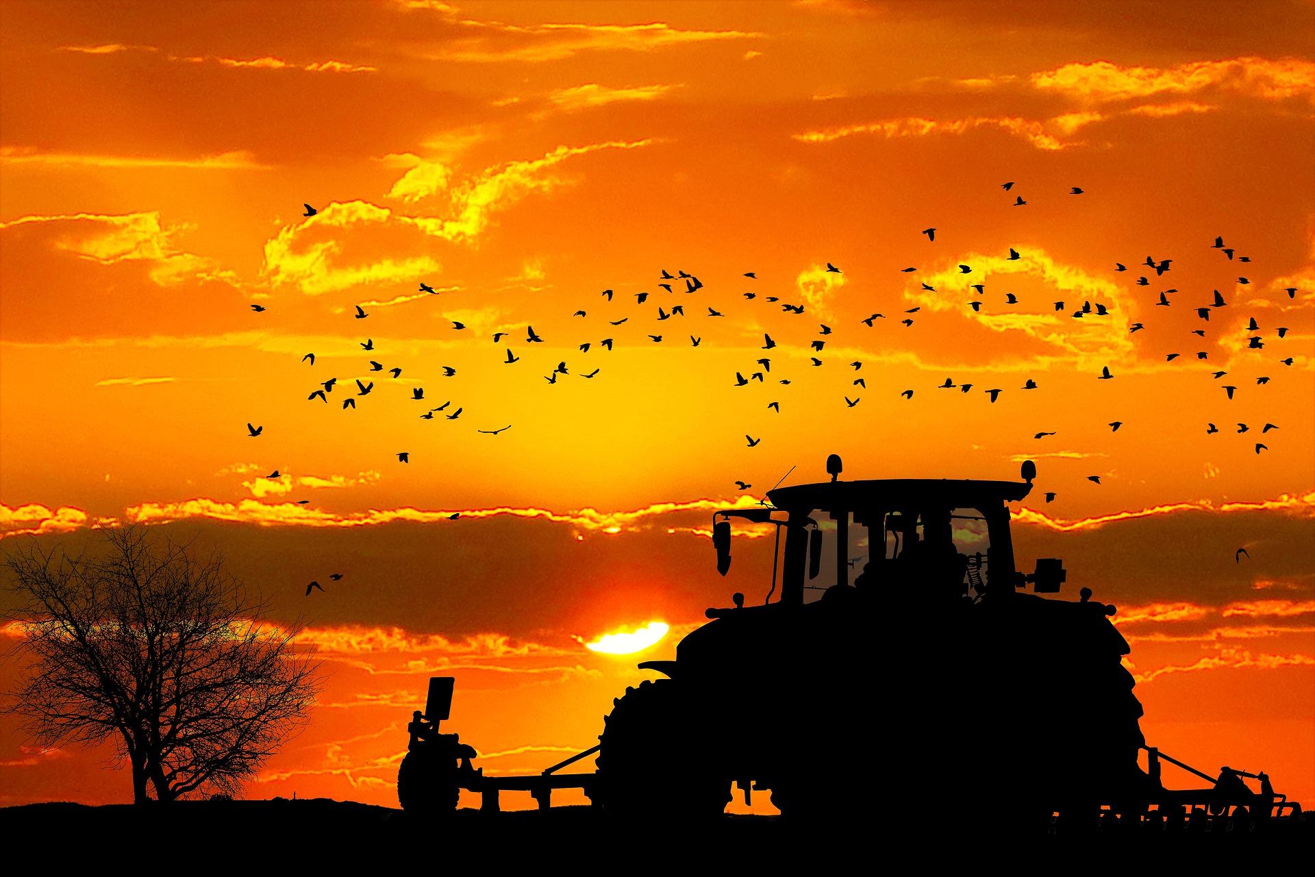 Tarımda IoT ve Büyük Veri: Geleceğin Sorunlarına Bugünden Çözümler